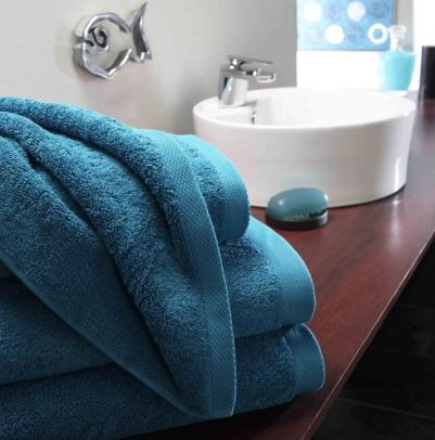 Boutique 750gsm Bath Towels