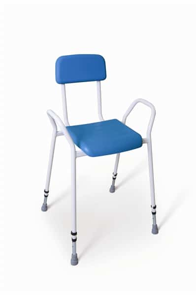 Deluxe Perching Stool with Back